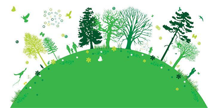 Jak można chronić środowisko na co dzień?