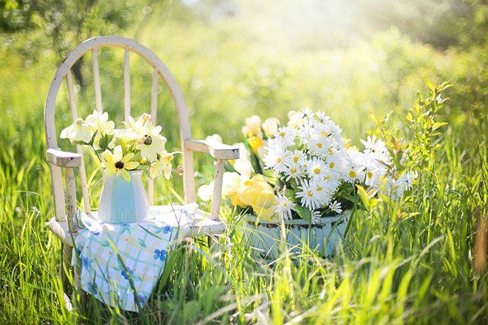 Opryskiwacze – delikatna pielęgnacja i ochrona roślin