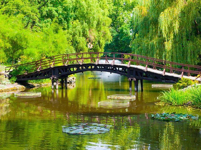 Ogrodowe inspiracje: czym charakteryzują się ogrody w stylu angielskim, francuskim i japońskim?