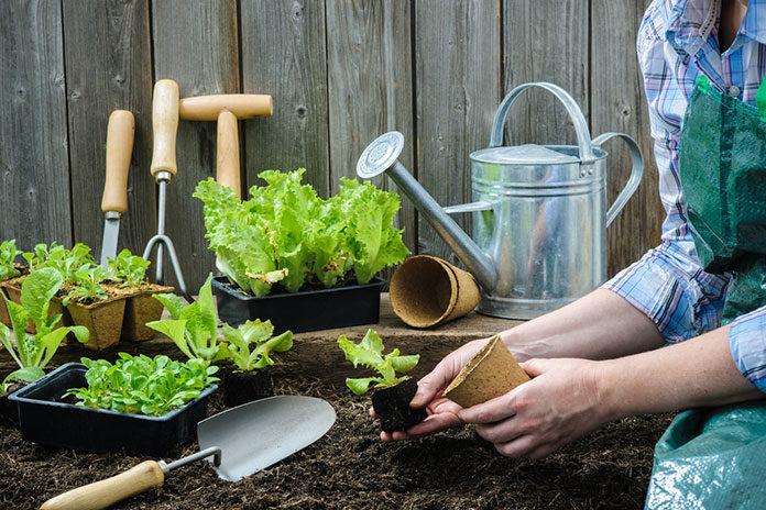 10 czynności do wykonania w ogrodzie na wiosnę